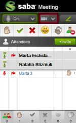 saba meeting ikony